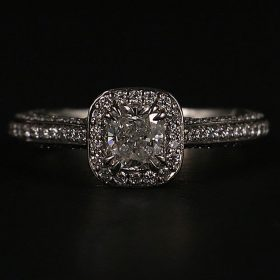 Lady's White Platinum Halo Engagement Ring